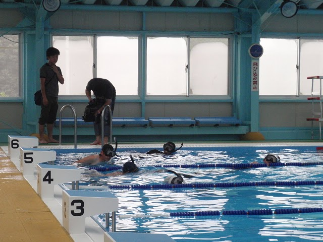 家島高校|ダイビング部活動