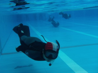 初日からひたすら泳ぎます。