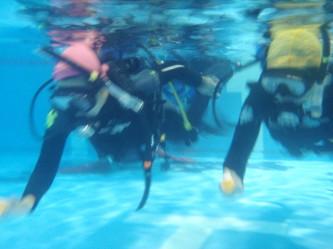 みんなアグレッシブな泳ぎです!