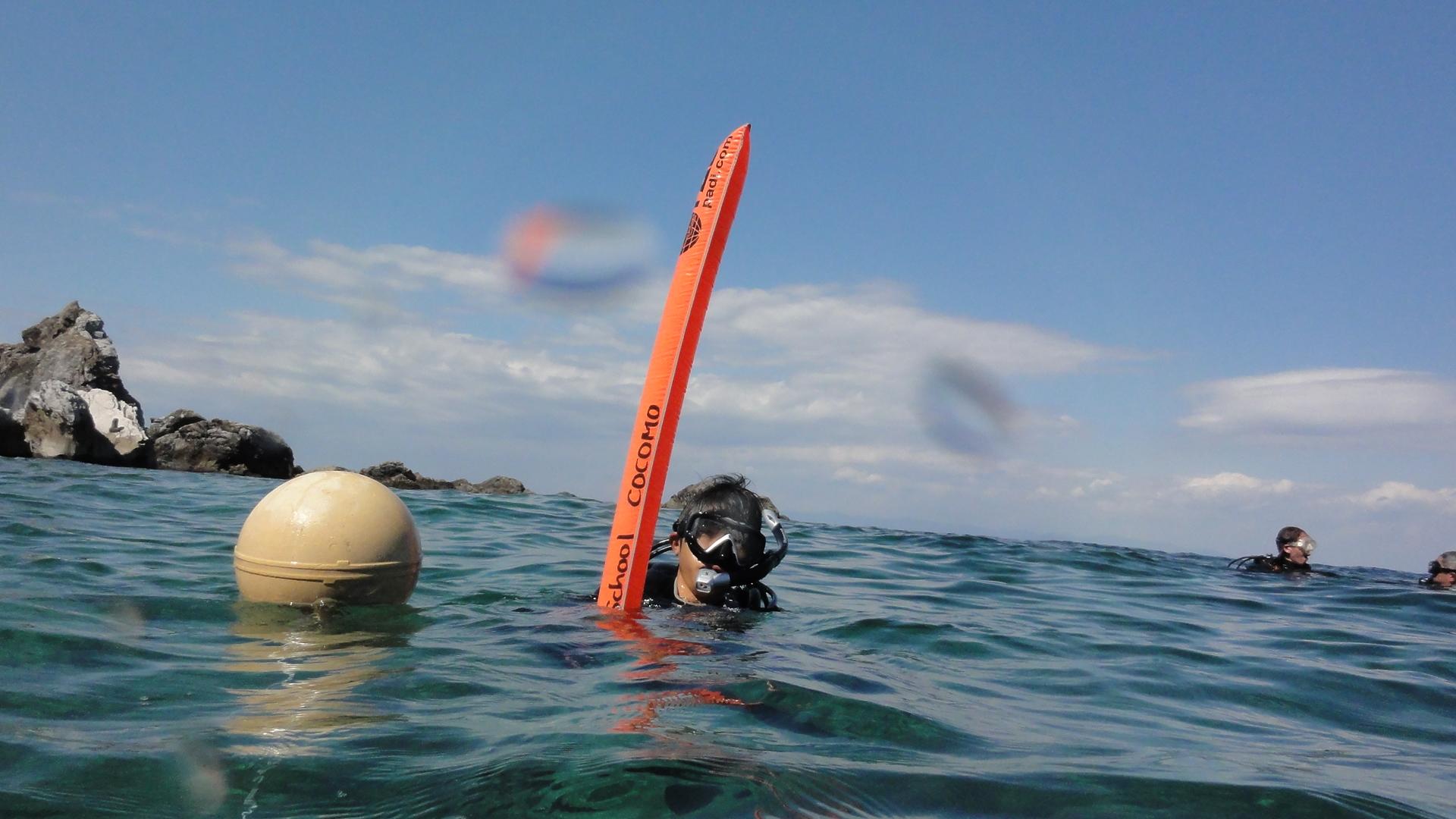 親子でダイビング、見知らぬ人とダイビング、様々なドラマチックダイビング!