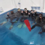 仲良しグループでお仕事帰りに体験ダイビング!ココモは店内プールで楽々!