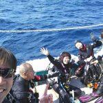 海底で、ポスト・ウミガメ、ダイビング!
