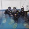 ダイビングライセンスコースとプロ(DM)コース