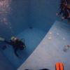 姫路のココモプールで楽しい体験ダイビング開催しました