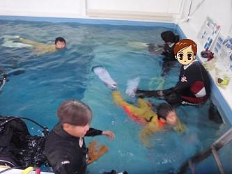 ココモ店内プールでご家族体験ダイビング!がっつり2時間ダイビング!