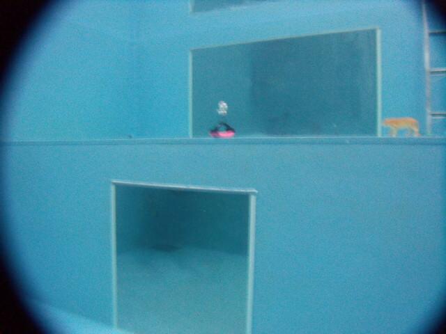 お仕事帰りにOK!大型ミラー付、ココモ店内プールで水中写真講座開催!