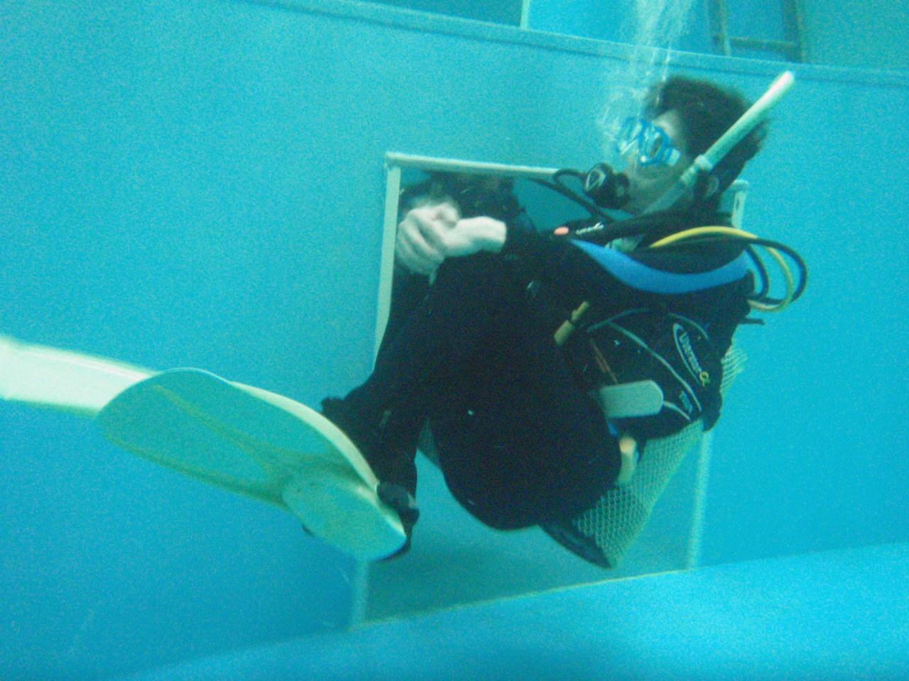 ココモの高品質ダイビングライセンス取得コース(店内で楽々プールセッション)
