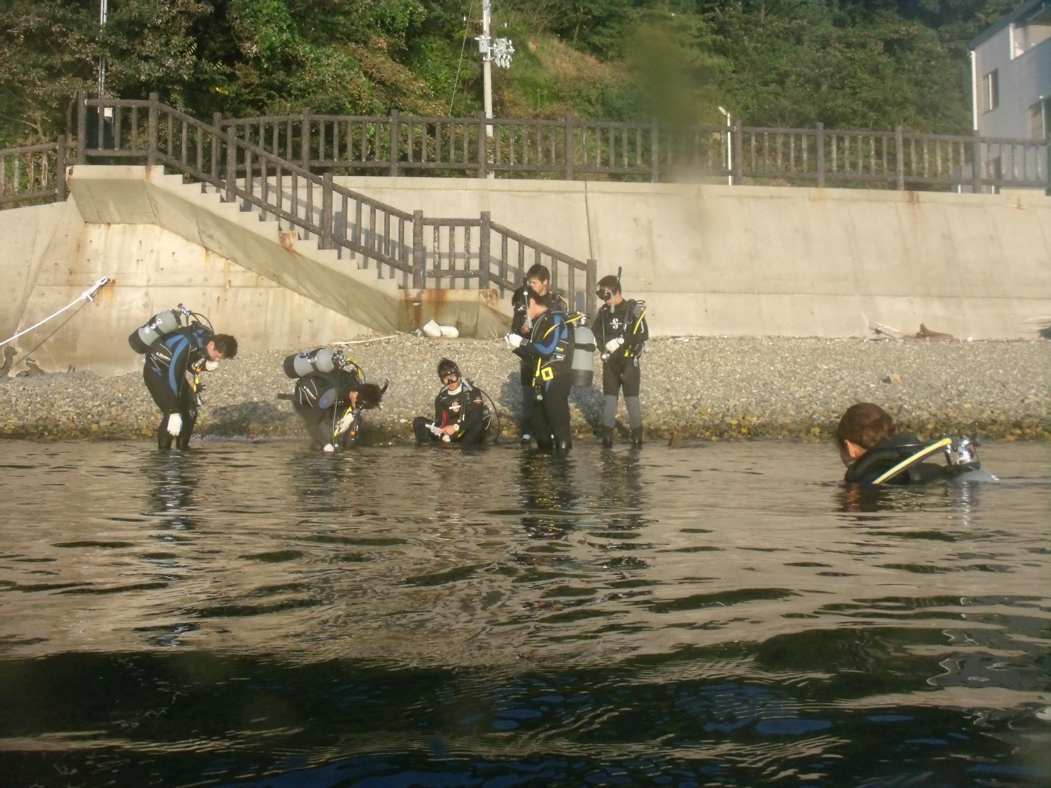 家島高等学校のマリンスポーツ部、地元の海でスキューバダイビング