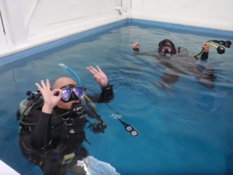 陸上生物が水中で自由&自在を手に入れる達成感!