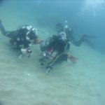 海底ジオパークを今日はのんびりファンダイブ!