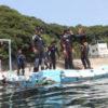 兵庫県立家島高等学校の授業でシュノーケリング