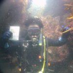 ダイナミックな海で日帰りダイビングライセンス取得