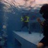 実は楽しいプールダイビングでブラッシュアップ!