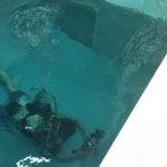 暑すぎる夏は、ココモプールで涼んで水中撮影練習!