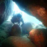ダイビングレポート – 田辺:天神崎(アーチ、サンゴ探索)梅林が咲き始めてます!キレイです!