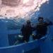 ダイビングライセンスコース(プール練習)店内プールで楽しく快適!